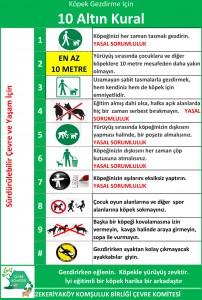 Köpek Gezdirmek İçin 10 Altın Kural